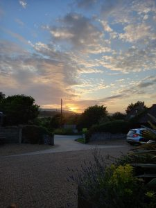 A beautiful sunset lighting up the clouds and blue sky. Below trees are dotted around and entrance into a driveway with a cobbled road. Flowers are at the foreground and add to the beauty of the sunset.